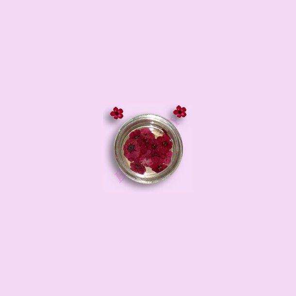 Rød · Tørret Blomster · Nail Art